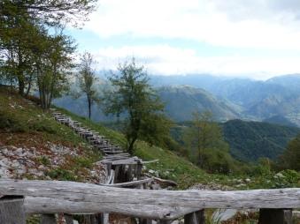 Slovenia P1000723