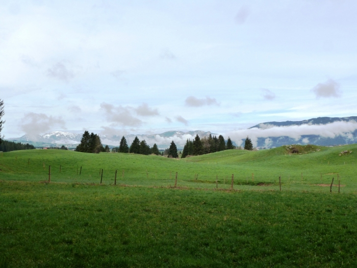 The direction from which the Austrian attack came. The rocky outcrop to the right was the location of two British machine guns; the ten-man picquet from Brittain's A Company was just beyond. The town of Asiago is in the valley behind.