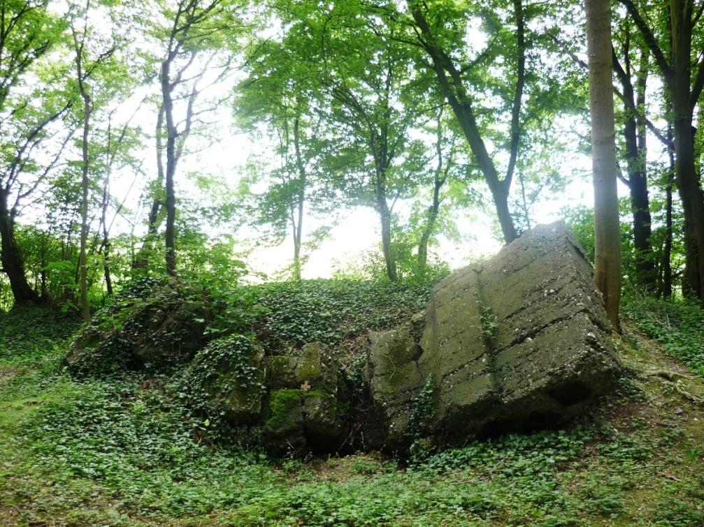 Rossignol Wood German bunker