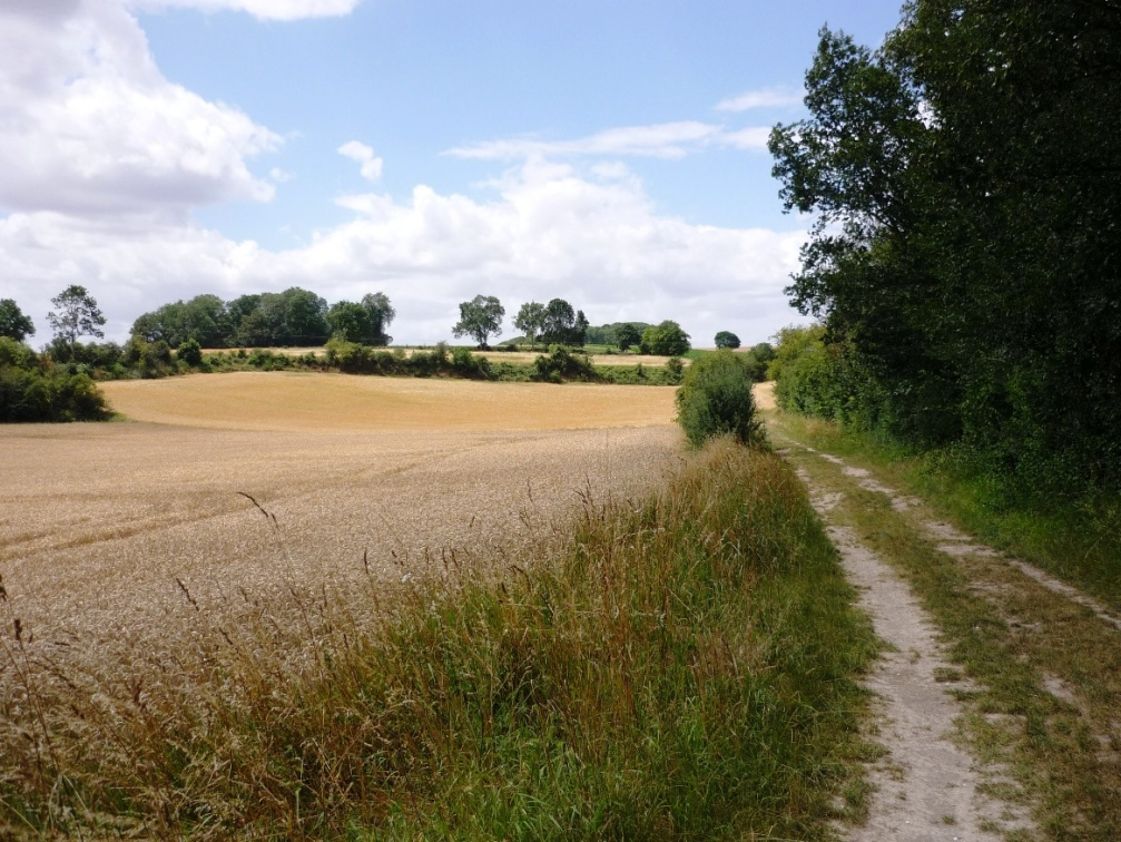 Route of Can Scots 8 Aug 1918 looking west, Vallee d'Amiens on left