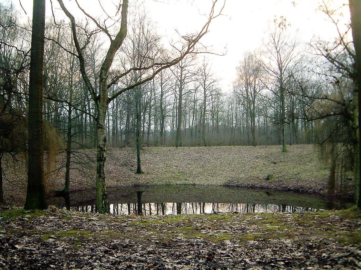WW1 battlefield Caterpillar Crater